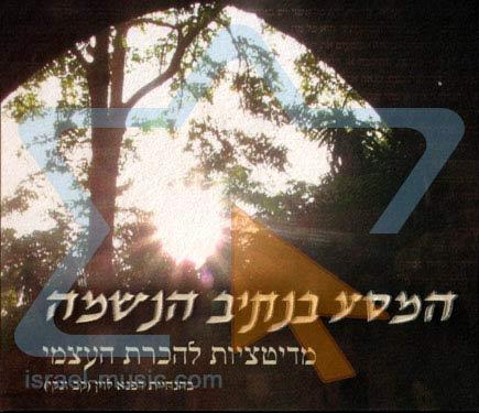 המסע בנתיב הנשמה - דפנא לוין
