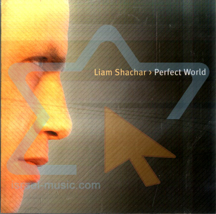 Perfect World by Liam Shachar