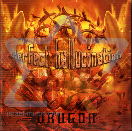 Perfect Hallucination by Drugon