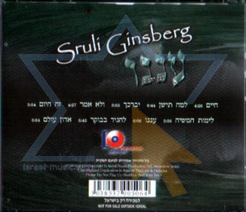 Anenoo by Sruli Ginsberg