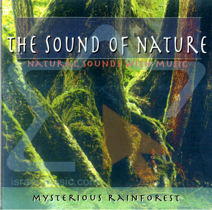 The Sound Of Nature Mysterious Rainforest Israel Music