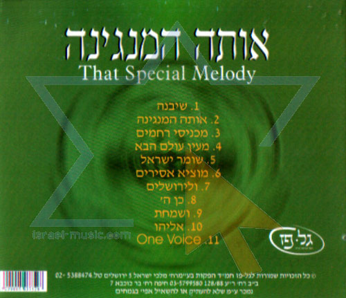 That Special Melody by Shlomo Simcha