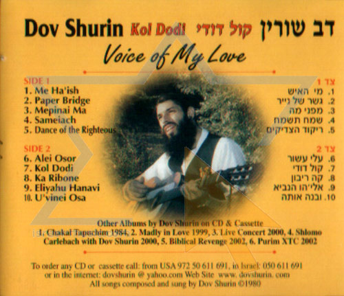 Voice of My Love by Dov Shurin