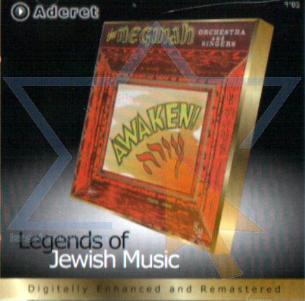 Awaken by The Neginah Orchestra