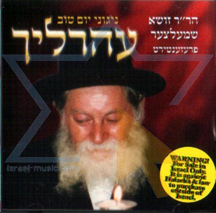 Nigounei Yom Tov Por Zousha Schmelezer