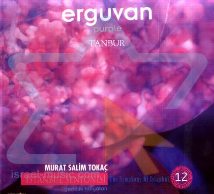The Symphony of Istanbul - Purple by Murat Salim Tokac