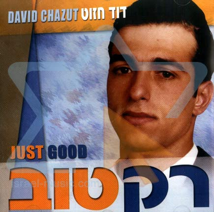 Just Good by David Chazut