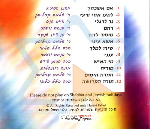 Jewish Soul Guitar 1 by Meir Halevi Eshel