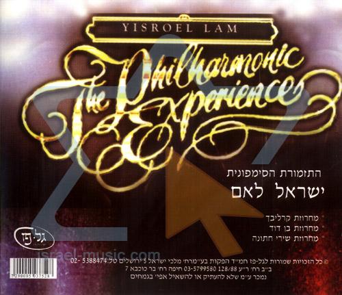 The Philharmonic Experience by Yisroel Lamm