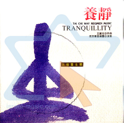 Tranquillity by Nanjing Dynasty Orchestra