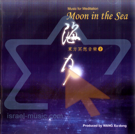 Moon in the sea - Music for Meditation Par Wang Xu - Dong