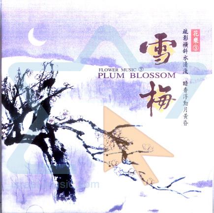 Plum Blossom by Shi Zhi - You