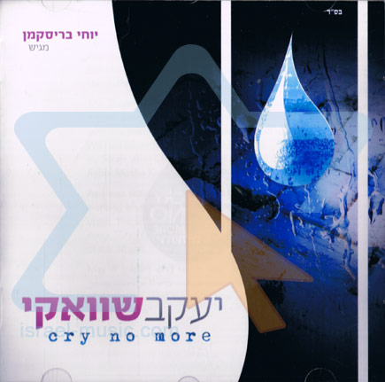 Cry No More Par Yaakov Shwekey