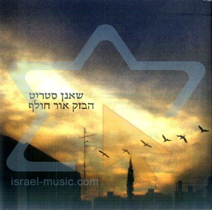 Flashing Light by Sha'anan Streett