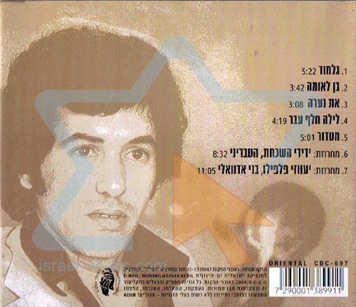 Songs Into the Night by Haim Moshe