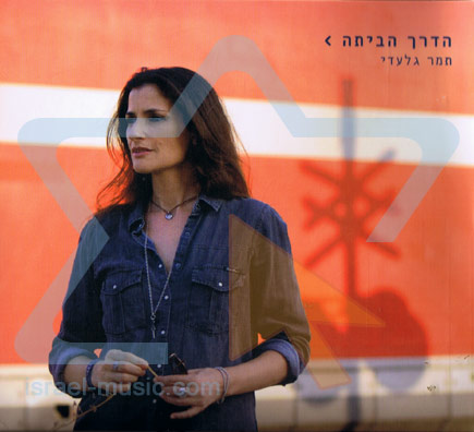 The Way Home by Tamar Gilaadi