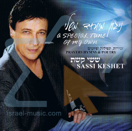 A Special Tune Of My Own by Sassi Keshet