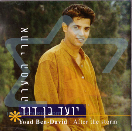 After the Storm by Yoad Ben-David