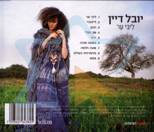 Libi Er by Yuval Dayan