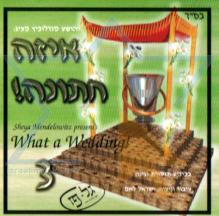 What a Wedding! - Part 3 by The Neginah Orchestra