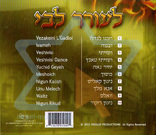 Le'Orer Libi by Rabbi Yeedle Einhorn