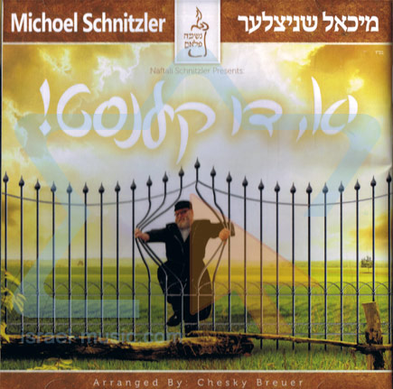 Yes You Can by Michoel Shnitzler