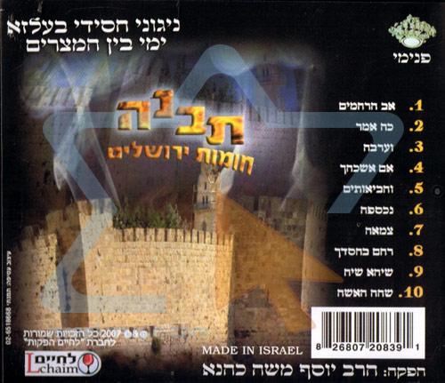 Build Jerusalem Walls by Yosef Moshe Kahana