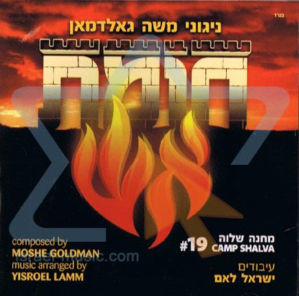 Fire Wall - Camp Shalva 19 by Moshe Goldman