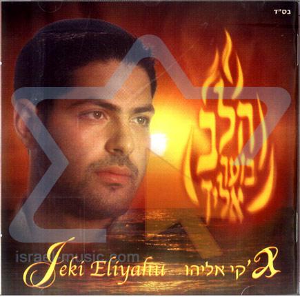 Heart on Fire by Jecki Eliyahu