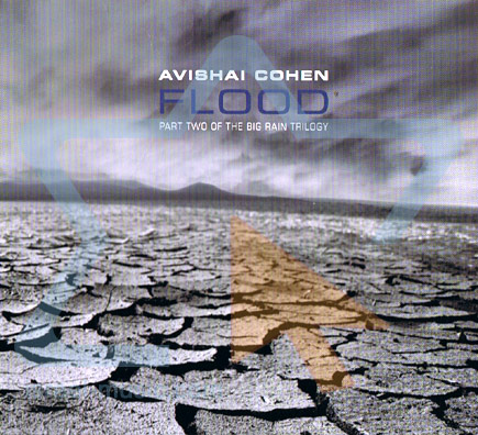 Flood by Avishai E. Cohen