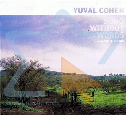 Song Without Words by Yuval Cohen