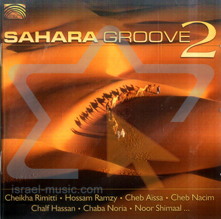 Sahara Groove 2 by Various