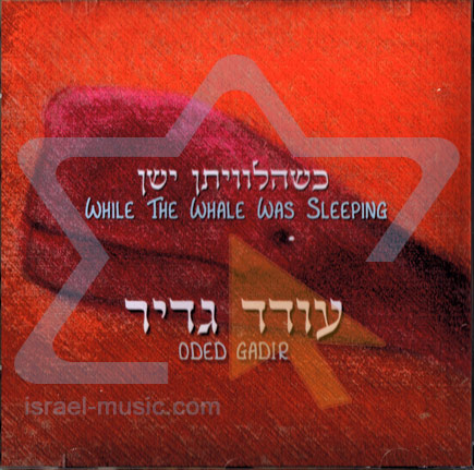 While the Whale was Sleeping Par Oded Gadir