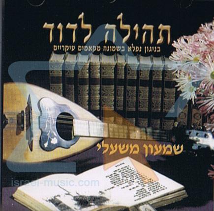 Tehila Ledavid by Shimon Mishali