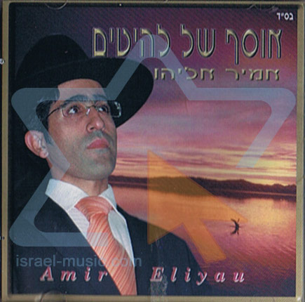 Hits Collection by Amir Eliyahu