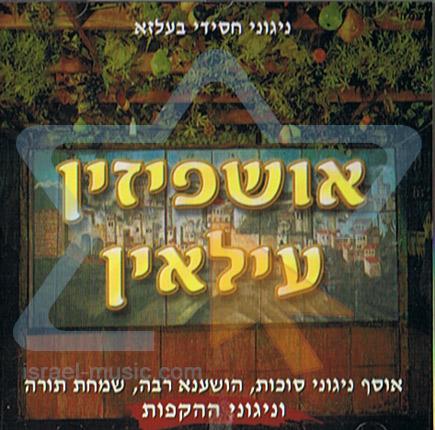 Uoshpizin by Rabbi Yermie Damen
