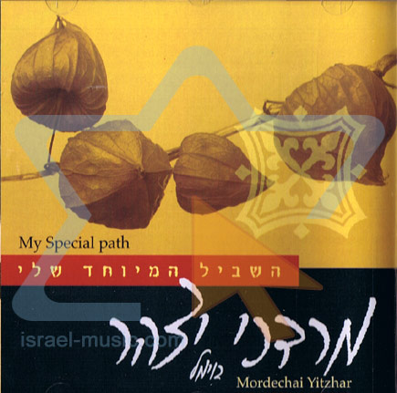 My Special Path by Mordechai Yitzhar