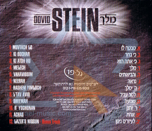 Melech by Dovid Stein