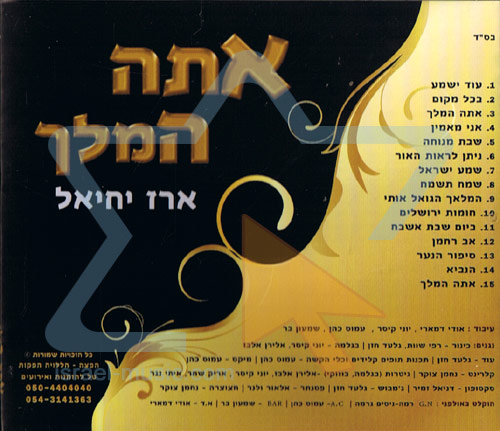 You Are the King - Erez Yechiel