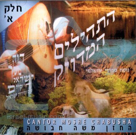 T'hilim - Part 1 - Cantor Moshe Chabusha
