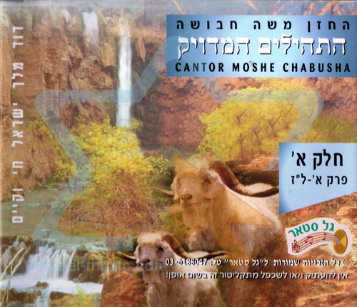T'hilim - Part 1 by Cantor Moshe Chabusha