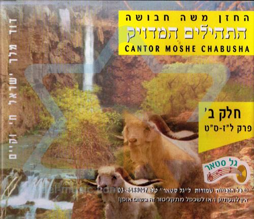 T'hilim - Part 2 by Cantor Moshe Chabusha