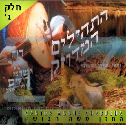 T'hilim - Part 3 Par Cantor Moshe Chabusha