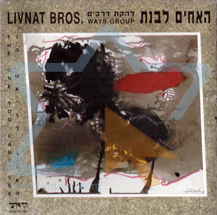 The One You Can't see by The Livnat Brothers