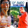 Spirit of Budo - The Power of Balance Por Oliver Shanti