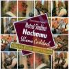 Motzai Shabbat Nachamu Par Shlomo Carlebach