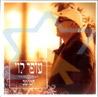 The Best of - The Slow Songs by Ofer Levi