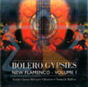 Bolero Gypsies -Part 1 by Various