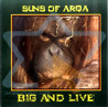Big and Live by Suns of Arqa