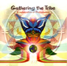 Gathering the Tribe by Various